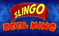 Slingo Reel King slot